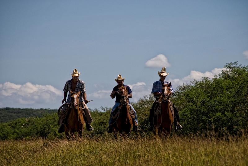 THree cowboys 7449.jpg