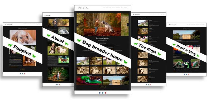 Show dogs websites.jpg