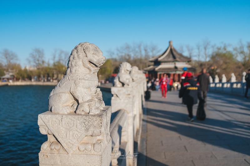 BeijingMarch2019-48.jpg