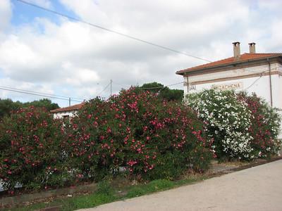 Sardinia, July 12