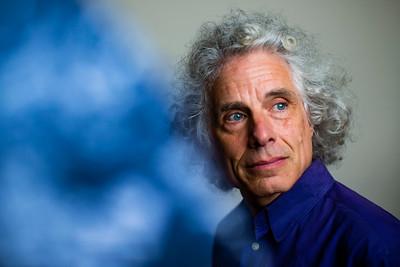 El Pais: Steven Pinker