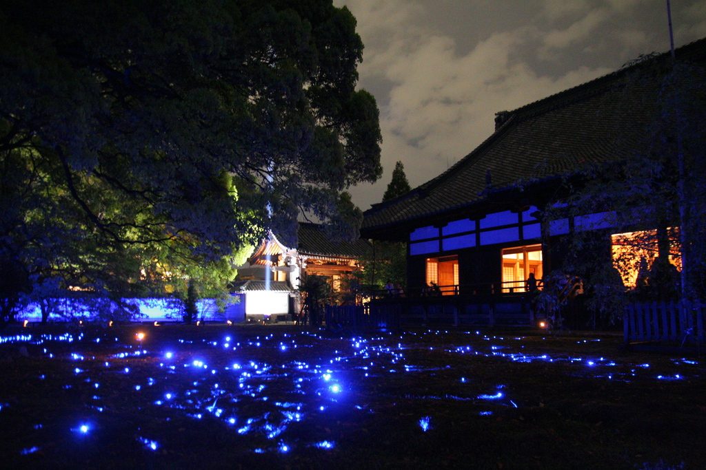 Shorenin Lightup at Kyoto.
