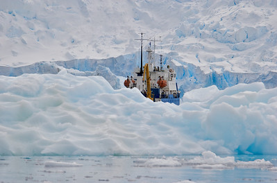 Antarctica Misc