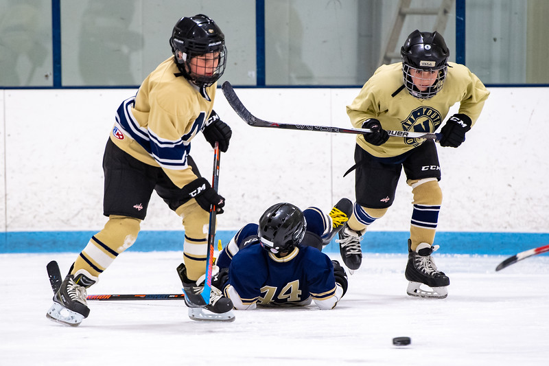 2019-Squirt Hockey-Tournament-171.jpg