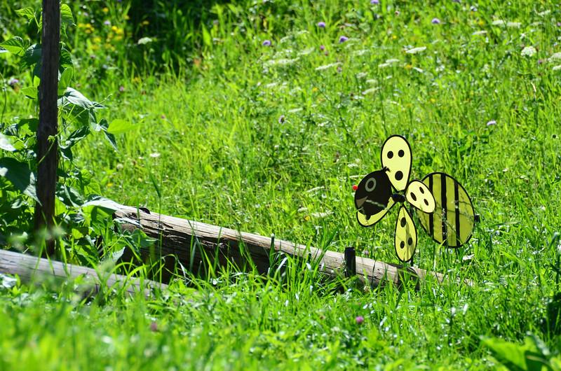 Bee Wind.