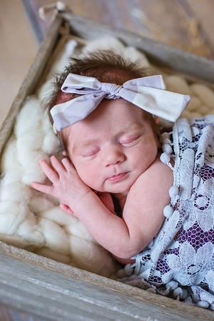 Ivy {newborn session}