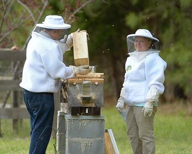 4-2018 Belback Beehive