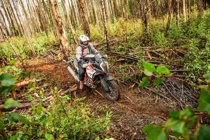 2019 KTM Australia Adventure Rallye (249).jpg