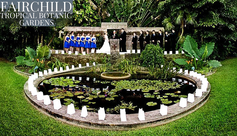 Fairchild Tropical Botanical Gardens - Mar 2020