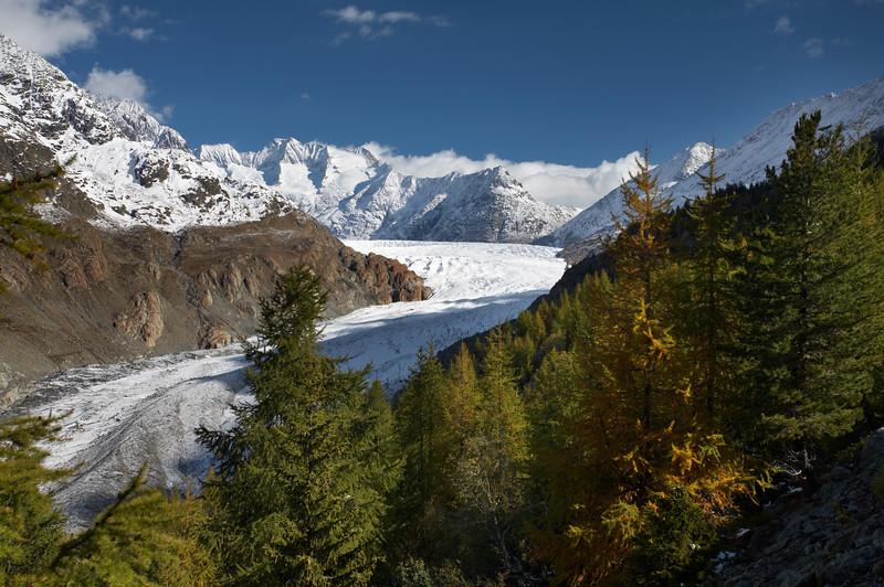 Swiss Alps -6489.jpg