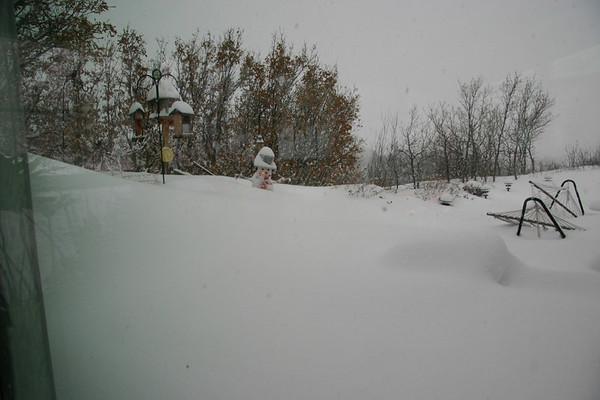Colorado 2006 XMAS Blizzard