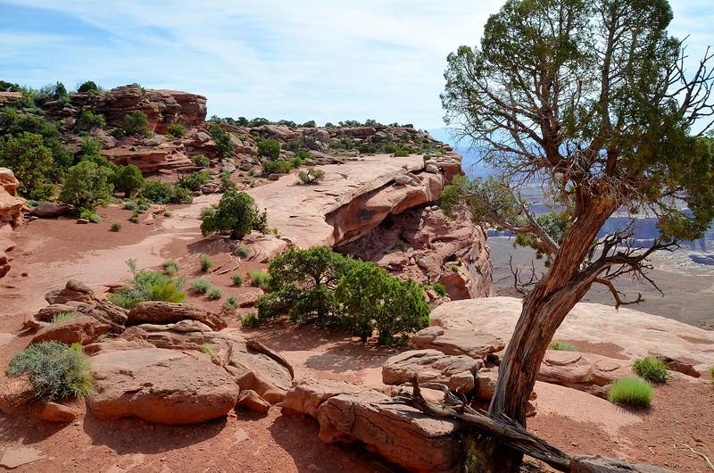 canyonlands_2014_055.jpg