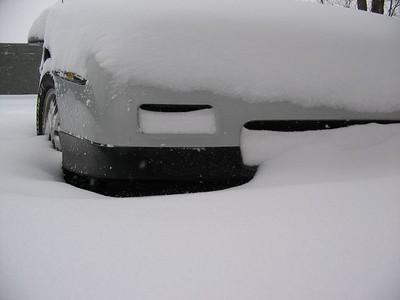Fiero's under snow
