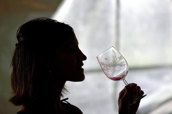 World of Wine 2008