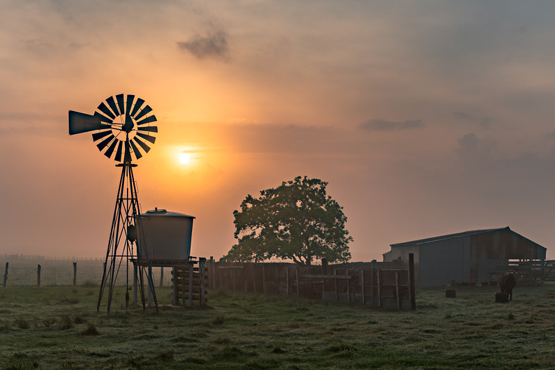 Foggy Sunrise on the Farm (3x2)