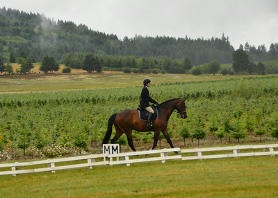 Inavale Farm - June 2014