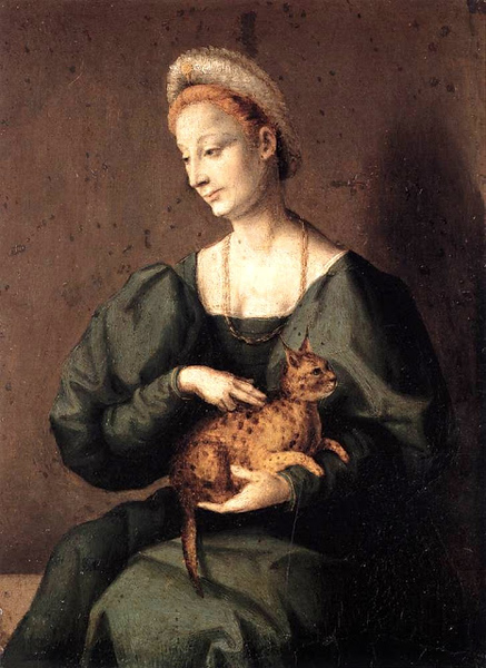 1540s Francesco d'Ubertino Verdi (1494-1557) Woman with a Cat.jpg
