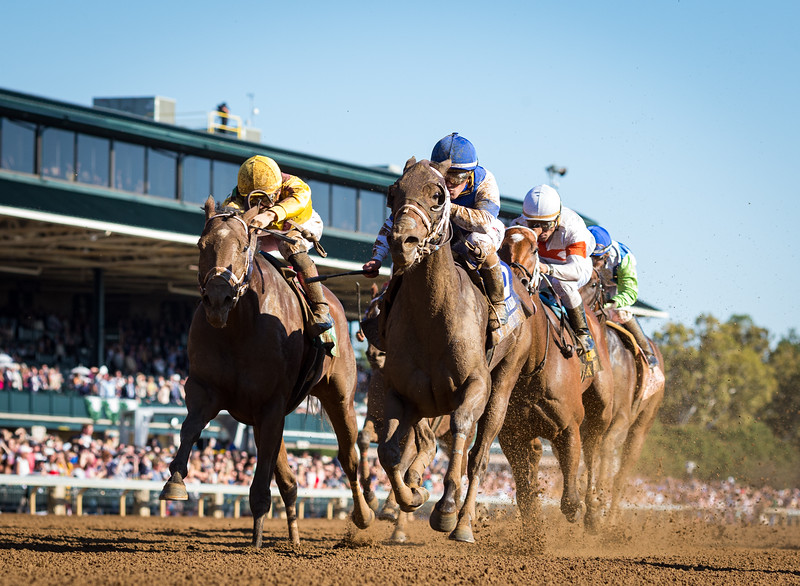 """Spiced Perfection (#3, Smiling Tiger) wins the Thoroughbred Club of America (G2) a """"Win and You're In"""" for the Breeders' Cup Filly and Mare Sprint at Keeneland on 10.05.2019. Javier Castellano up, Peter Miller trainer, Pantofel Stable, Wachtel Stable and Peter Deutsch owners."""