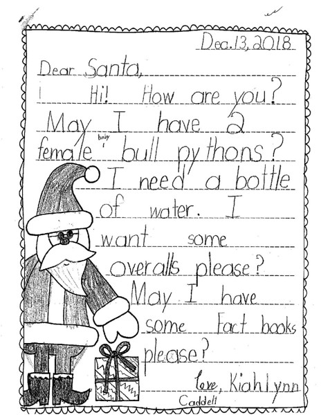 Mrs. Weir's second grade Letters to Santa (14).jpg