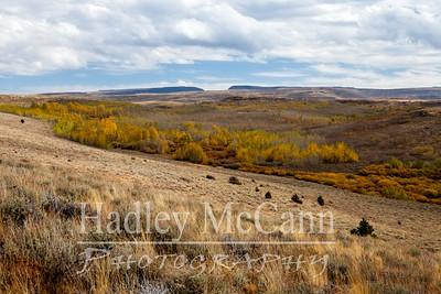 Steens Mountain fall 2014