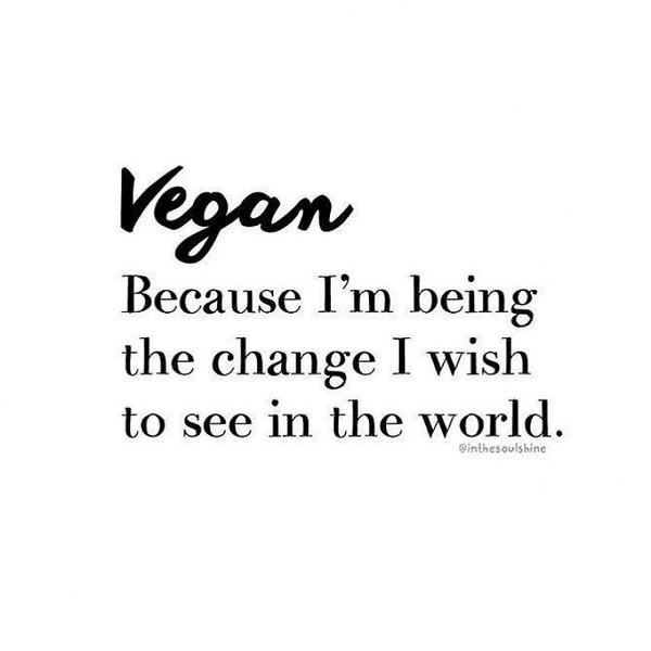 FreshGreenSmoothies_com-Vegans-Intelligent-Compassionate-raworganicvegan-4281.jpg