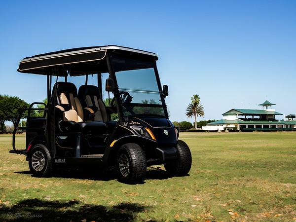 2017 Yamaha Golf Cart