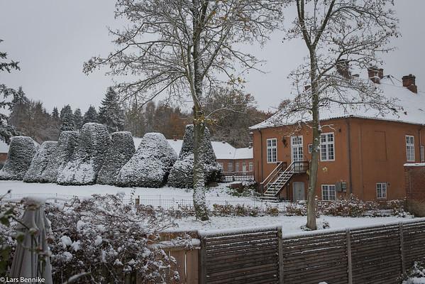 2016 Sne og frost i november