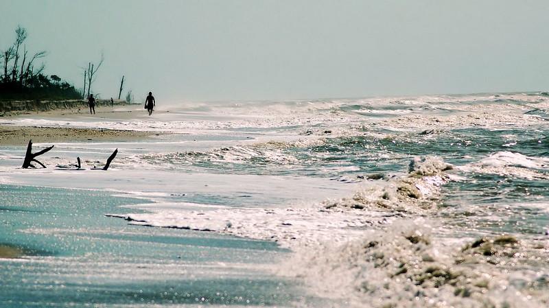 Florida 2005 2.JPG