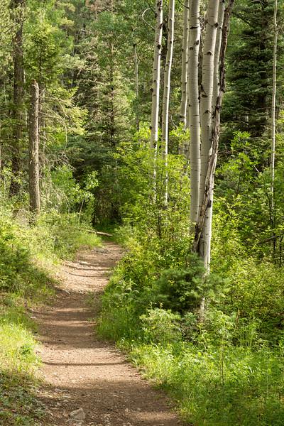 Columbine-Hondo Wilderness