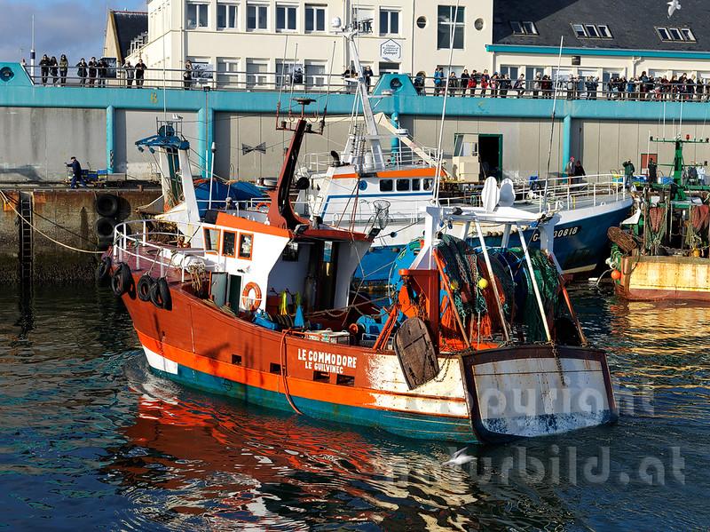 16B-05-206 - Im Hafen von Guilvinec