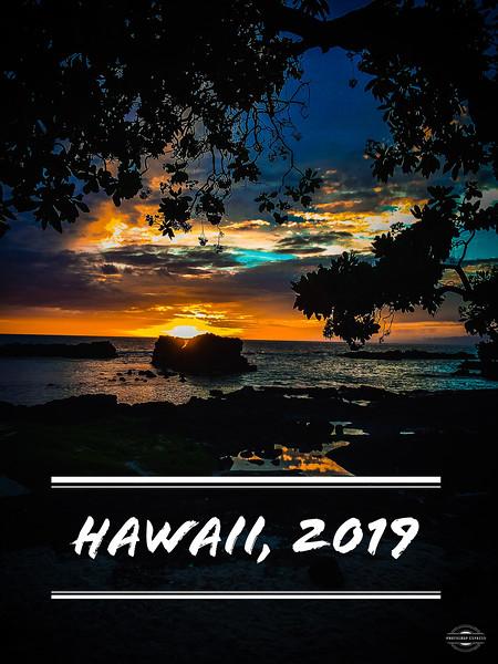 Hawaii, 2019