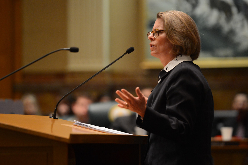 . Rep. Cheri Gerou, R-Evergreen, addresses the house before a vote on civil union at the State Capitol in Denver, CO March 12, 2013.  (Photo By Craig F. Walker/The Denver Post)