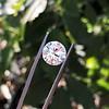 3.86ct Old European Cut Diamond GIA K VS2 64