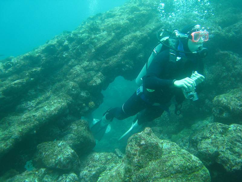 Diving in the Galapagos (126 of 392)