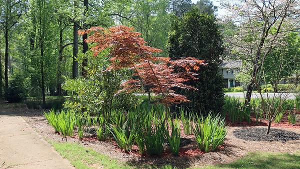 April 5:  Finishing the spring mulch project .  .  .
