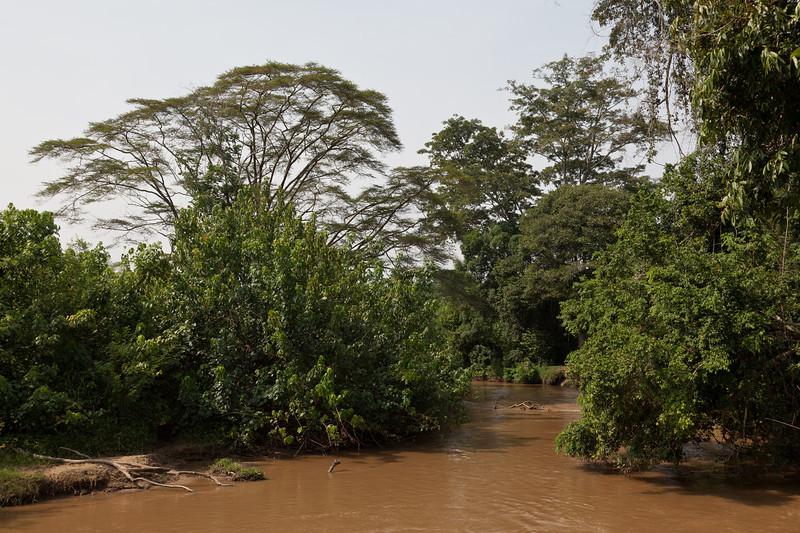 Border River Uganda-Congo / Grenzfluss zwischen Uganda und Kongo (Queen Elizabeth NP / Ishasha sector)