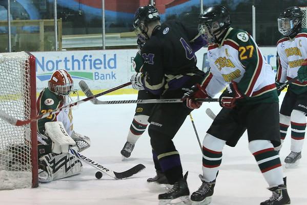 Var. Ice Hockey defeated Edision Eagles, Jan. 18, 2016 at the Woodbridge Rec Ctr.