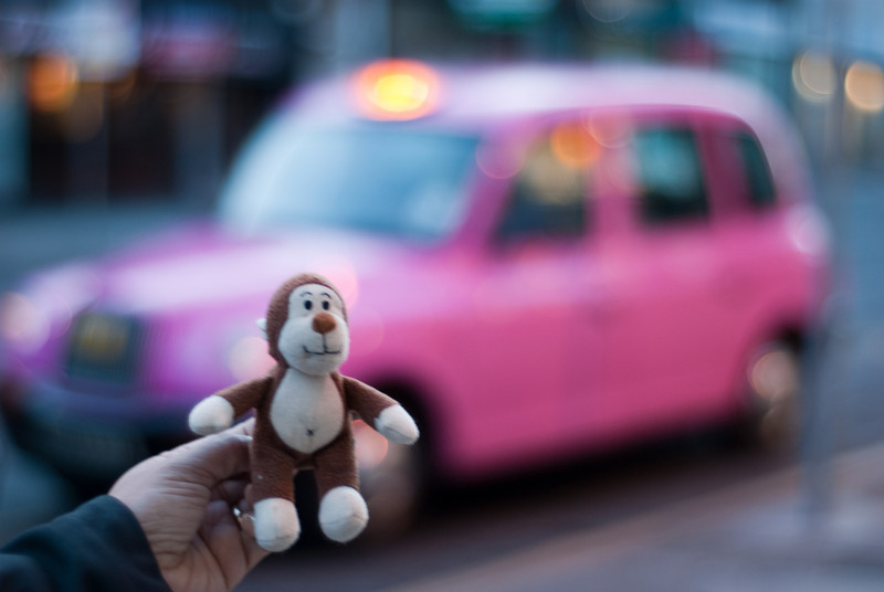 The monkey and the pink taxi