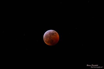 Blood Moon - Jan 2019