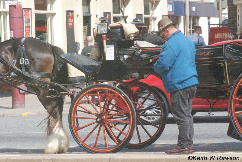 The coachman counts his earnings