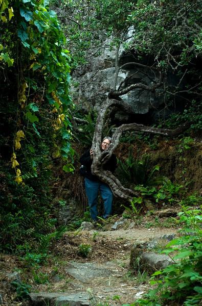 _DSC3160Gary in tree.jpg