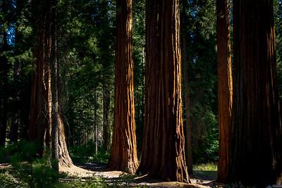 Yosemite Sept. 2018