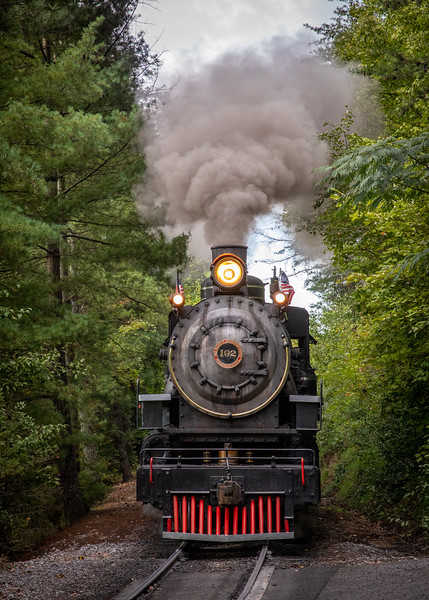 WVWS_Dollywood Railroad-8136.jpg