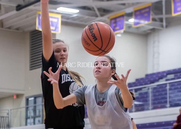 Broughton girls basketball vs Wake Forest. November 14, 2019. D4S_9962