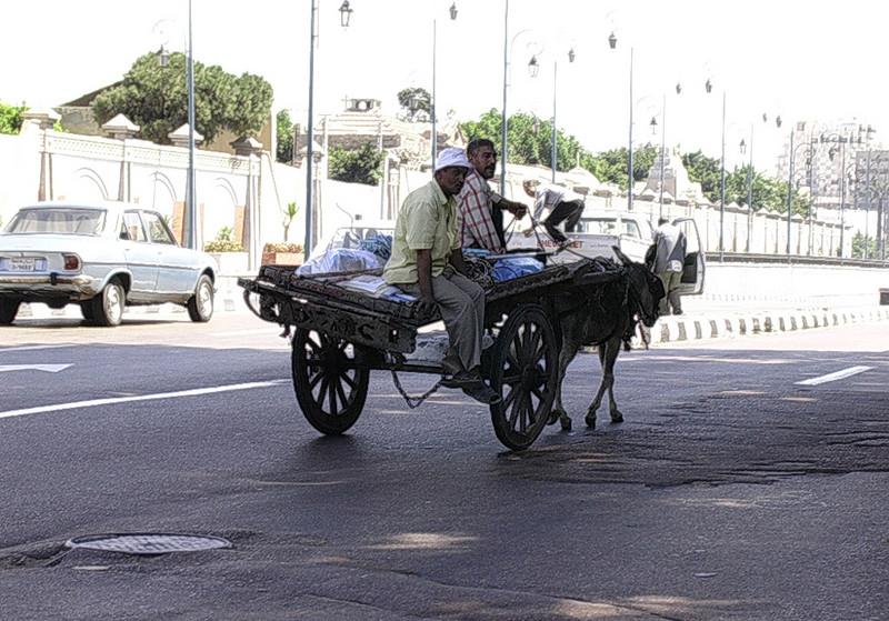 Eselkjerre i trafikken (Foto: Ståle)