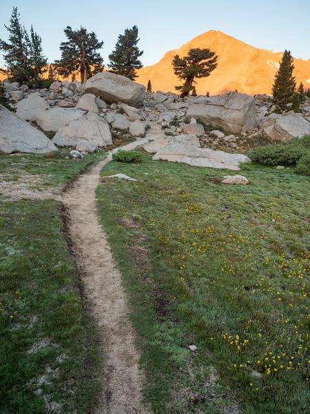 Cirque Peak & the New Army Pass Trail at dawn.