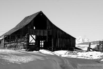 2008-01 Winter