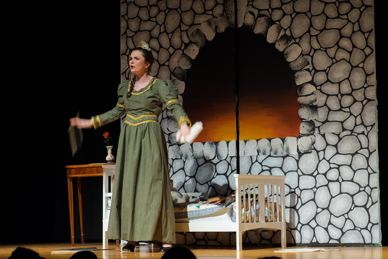 2015-03 Shrek Play 3035.jpg