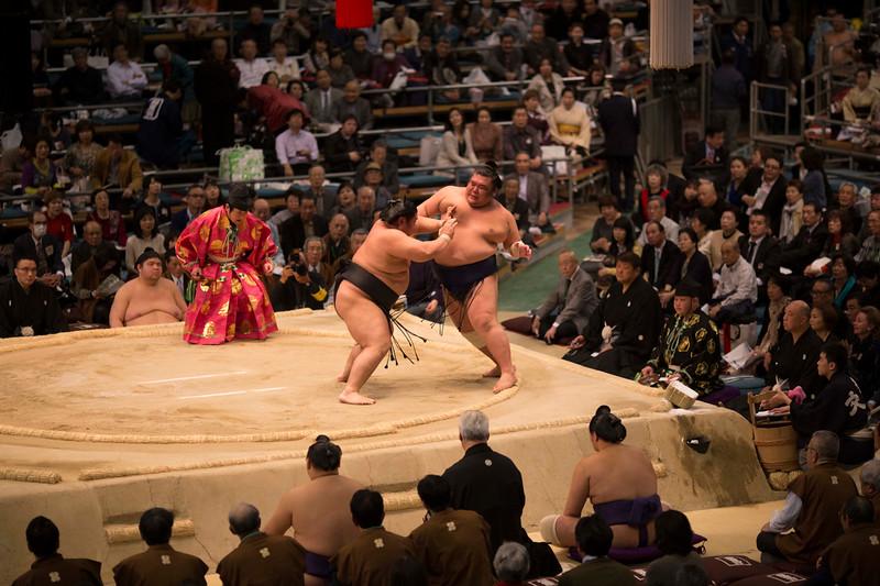 Osaka Sumo 220313 45 .jpg