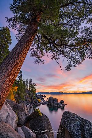 Lake Tahoe Watercolors